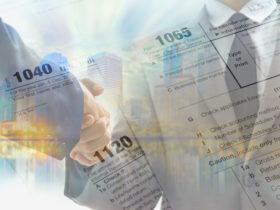 Income Tax Professional